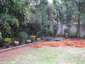 סידור צמחים והוספת אדמה