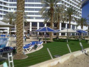 דשא סינטטי מלון קראון פלאזה ים המלח