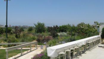 הקמת גינה גן אירועים