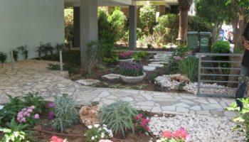 עיצוב גינה בית משותף תל אביב