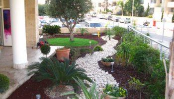 עיצוב גינת בית משותף בצפון תל אביב