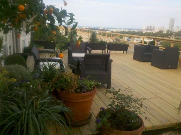 עיצוב גינת גג תל אביב
