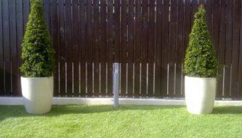 עציץ גלזורה על דשא סינטטי