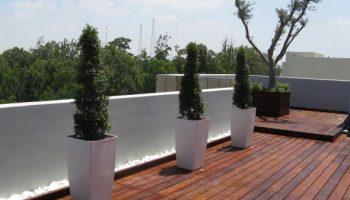 תכנון וביצוע גינת גג
