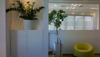 2עציצים למשרד