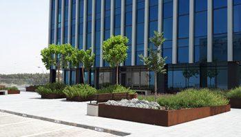 הקמת גינה משרדים יהב-נחמיאס