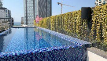הקמת גינת גג תל אביב