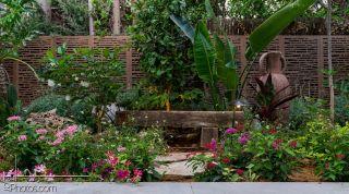 עיצוב גינה בקיסריה - חברת גינון